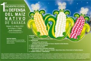 Primer Encuentro Maíz Oaxaca