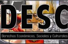 Avance en derechos económicos, sociales y culturales: ONU