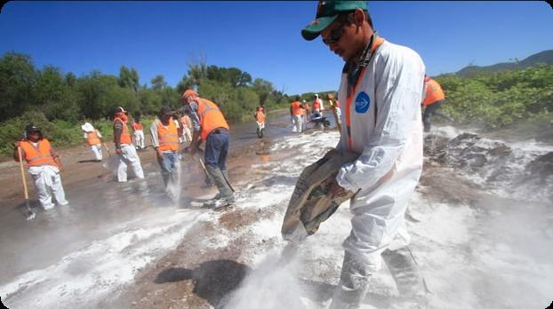 ONU examinará impactos negativos de empresas en derechos humanos de mexicanos