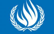 Pasantía en la Unidad de Observación de la ONU-DH