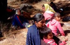 """""""Como pueblo denunciamos que la Semarnat sigue otorgando permisos sin consultarnos"""": Segundo gobernador de la comunidad Bosques San Elías Repechique"""