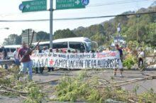 Habitantes de Tepoztlán continúan bloqueo para detener ampliación de la autopista
