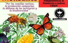 5ª Marcha mundial contra Monsanto