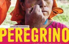 """Exposición fotográfica """"Peregrino"""""""
