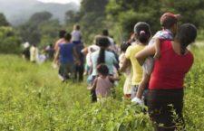 Sufre crisis humanitaria la comunidad desplazada por el Ejercito guatemalteco y refugiada en México: Organizaciones
