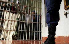 Proceso penal abreviado y derechos de las víctimas | Insyde en Animal Político