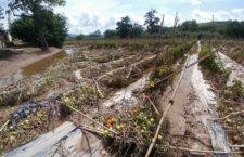 Daños en casas, carreteras y cultivos deja Katia en Puebla