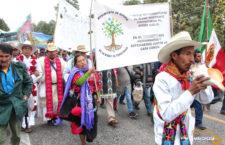 Ante relatora de la ONU, denuncian despojo a pueblos indígenas