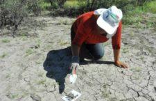 Colectivo Voz y Dignidad por los Nuestros busca restos óseos en la Huasteca potosina