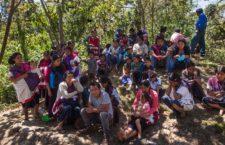 Más de 325 mil personas han sido víctimas de desplazamiento interno forzado en México