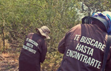 BAJO LA LUPA | El tráiler de la muerte y la putrefacción en mi país, por Elisa Alanís
