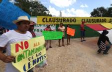 Ratifica jueza suspensión de megagranja porcícola en cenotes de Yucatán