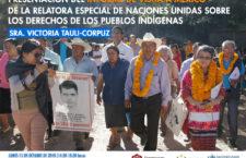 EN AGENDHA | Presentación de informe de relatora ONU sobre pueblos indígenas