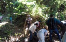 IMAGEN DEL DÍA | Veracruz: Tras dos años de insistir, Colectivo Solecito ingresa al predio kilómetro 13.5