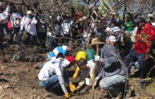 BAJO LA LUPA | Desenterrar la verdad, sembrar esperanza y construir paz, por Montserrat Castillo y Amaya Orodika