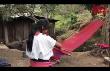 VIDHEO | Zapatistas de Aldama y Chenalhó sitiados por civiles armados