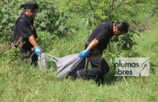 IMAGEN DEL DÍA | Colectivos hallan diez cuerpos en fosas clandestinas en Veracruz
