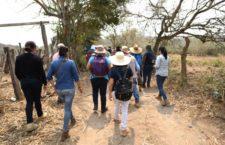 IMAGEN DEL DÍA | Suman 43 fosas en Úrsulo Galván, Veracruz