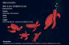 EN AGENDHA |  Presentación GDL: Ayotzinapa: La travesía de las tortugas