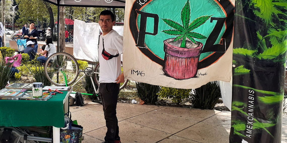 IMAGEN DEL DÍA   Piden legalizar mariguana con campamento afuera del Senado