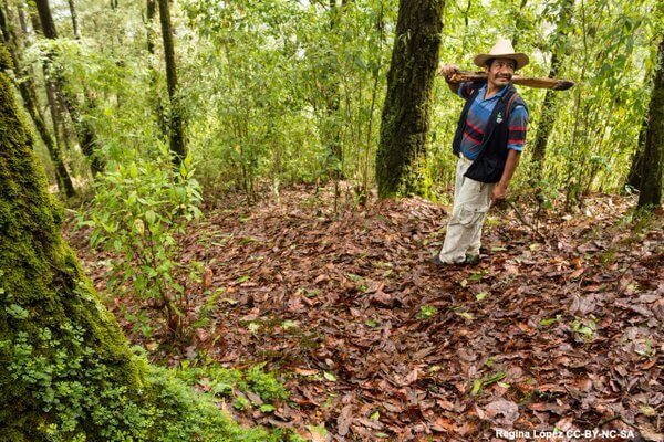 Ganan comunidades me'phaa en Guerrero batalla contra mina; llaman a revisar Ley Minera