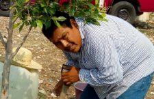 Encuentran asesinado a defensor indígena en Guerrero