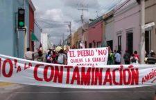 Consulta indígena para mega parque solar en Muna, Yucatán, incumple estándares internacionales