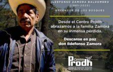 Falleció Ildefonso Zamora, histórico defensor de los bosques