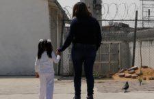 Equis y Documenta ingresan solicitudes de amnistía