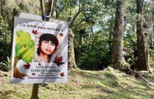 IMAGEN DEL DÍA   En Veracruz, siembran árboles en memoria de desaparecidos