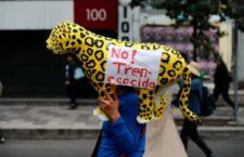 Cuestionan relatores de Naciones Unidas a México sobre el Tren Maya