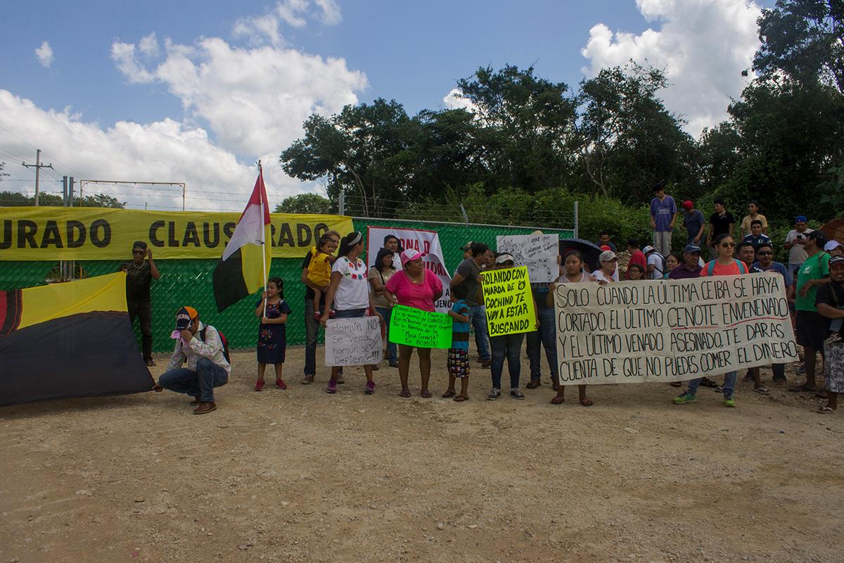 """Denuncian """"triquiñuela"""" de gobierno de Yucatán para favorecer a megagranja porcícola"""